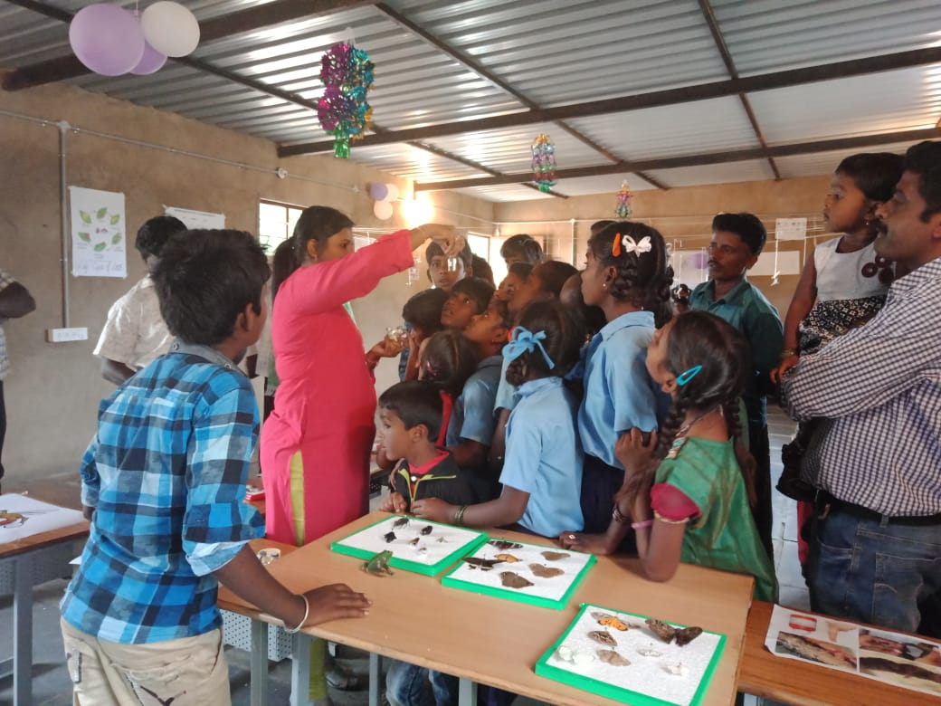Insects Day @ Green Valley International School, Sira (14)